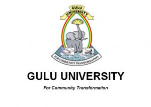 Gulu-web VET 4.0