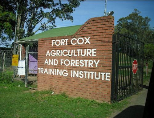 Curriculum review – Fort Cox Agricultural and Forestry Training Institute